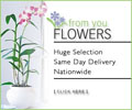 From You Flowers LLC
